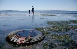 Beachgoers al parco di Richmond Beach Saltwater fotografia stock libera da diritti