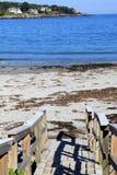 Beachgoers principales de la calzada de madera vieja abajo al agua tranquila del océano Imágenes de archivo libres de regalías