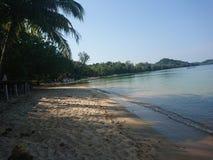 Beachlife 库存图片