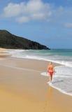 beachlife de isla玛格丽塔酒 免版税库存照片