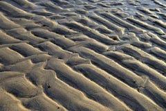 Beachs Royalty-vrije Stock Afbeeldingen