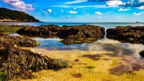 Beachscape Fotografia Stock