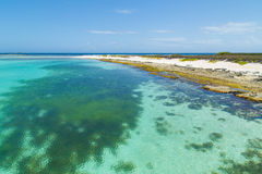 Beachscape des Caraïbes image libre de droits