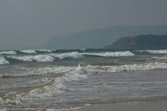 Beachscape morze, plaża & wzgórza -, Zdjęcie Stock