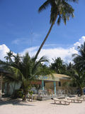Beachside cafe palm tree sabang philippines Royalty Free Stock Photo