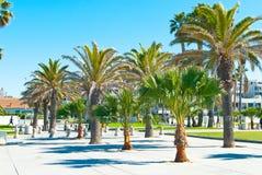 Beachside promenade Royalty Free Stock Images
