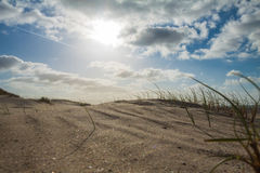 Beachside Zeeland. With cloudy sky royalty free stock image