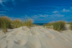 Beachside Zeeland Royalty Free Stock Image