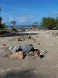 Beachstones Arkivfoto