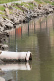 Beachten Sie das grüne Wasser Stockfoto