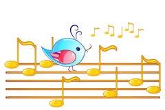 Beachten Sie Personal und Vogel Lizenzfreies Stockfoto