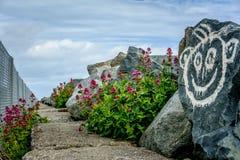 Beachwalk dell'Irlanda Fotografie Stock