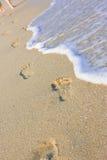 Beachwalk op het overzees stock foto