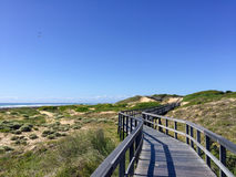 Beachwalk w Portowym Elisabeth, Południowa Afryka Obrazy Royalty Free