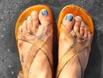 beachwear σανδάλια σχεδιαστών Στοκ Εικόνες