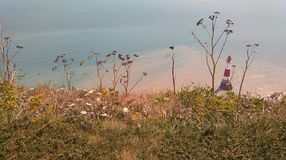 Beachy επικεφαλής φάρος από Clifftop στοκ εικόνες