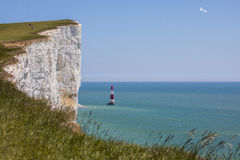 Beachy Head in East Sussex Royalty Free Stock Photography