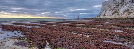 Beachy Head Light from the beach on an autumn evening sunset with HDR processing, East Sussex, UK royalty free stock photos