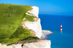 Beachy Head Lighthouse with chalk cliffs near the Eastbourne, East Sussex, England Royalty Free Stock Photos