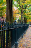 Beacon Hill, Boston. Autumn in Beacon Hill, Boston, USA Stock Image