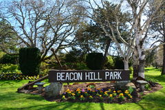 Beacon Hill park in Victoria BC,Canada Royalty Free Stock Image