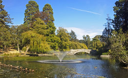 Beacon Hill Park in Victoria (Vancouver Island) Royalty Free Stock Photos