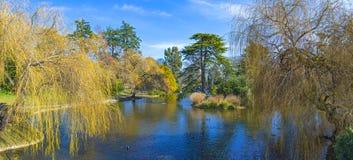 Beacon Hill Parkuje panoramę podczas wiosny w Wiktoria, Kanada zdjęcie stock