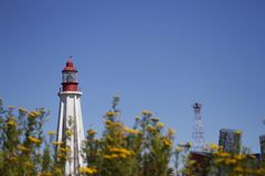 Beacon at Pointe-au-Pere in Gaspesie, canada. With flowers Stock Images