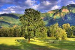 Beacon Rock State Park stock image