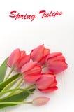 在白色木头的红色郁金香花束 图库摄影