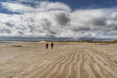 Beadnell Beach Royalty Free Stock Photo