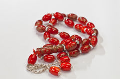 beads bönen Royaltyfria Bilder