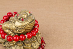 Beads jewelry and money frog. Stock Photos