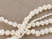Beads made of beautiful pearls Stock Images
