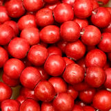 beads red Royaltyfri Bild