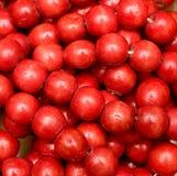 beads red royaltyfri bild