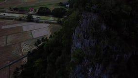 Beaeutifulsatellietbeeld van bos in Maleisië stock video