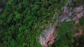 Beaeutifulsatellietbeeld van bos in Maleisië stock videobeelden