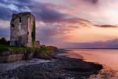 Beagh slott, Co limerick royaltyfri foto
