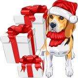 Beagle собаки в шлеме Santa Claus бесплатная иллюстрация