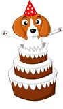Beagle birthday cake Royalty Free Stock Photos