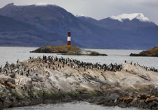 beagle channel del fuego tierra Στοκ Εικόνα