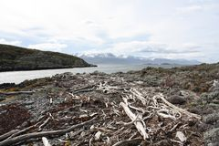 Beagle Channel, Patagonia Stock Images