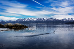 Beagle channel and Ushuaia in background Argentina Royalty Free Stock Photography