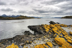 Beagle Channel view in Tierra del Fuego, Patagonia Royalty Free Stock Photos