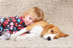 Beagle and child Royalty Free Stock Images