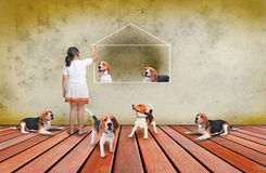 Beagle dog and girl on wood terrace Royalty Free Stock Images