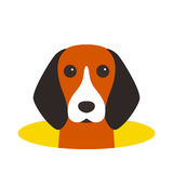 Beagle dog on the hole,watching, vector illustration. Beagle dog on the hole,watching  vector illustration Stock Images