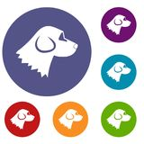 Beagle dog icons set Royalty Free Stock Images