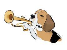 Beagle Dog Playing on Trumpet Stock Photo